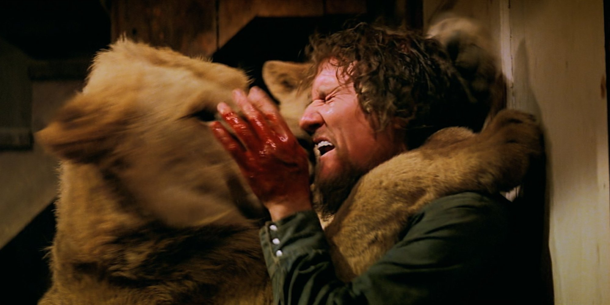 Roar (1981) Review: The Most Dangerous Film Ever Made