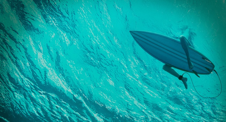 the-shallows-header